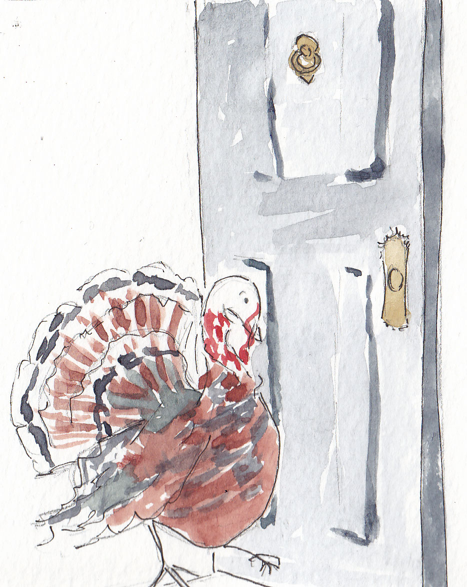Heritage Turkey walking through the door
